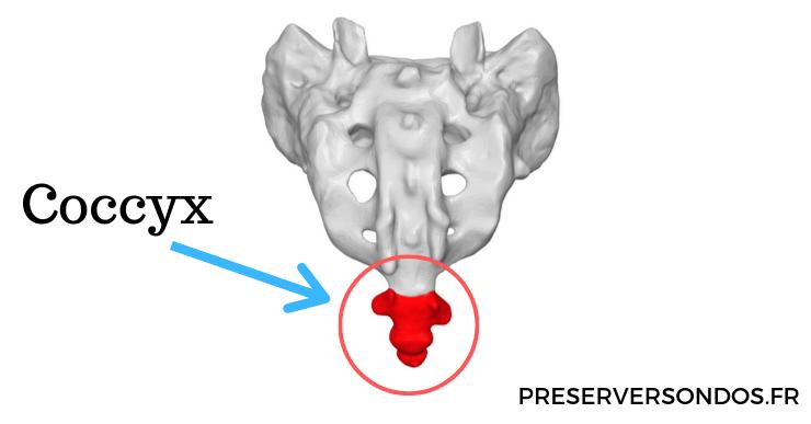douleur au coccyx